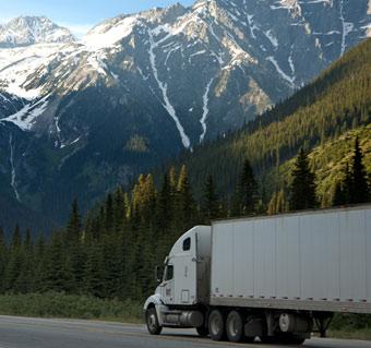 daels transport & distributie-beernem